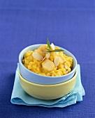 Saffron risotto with monkfish