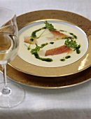 Cream of parsley soup with smoked trout fillets