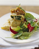 Pasta squares with cep and spinach filling