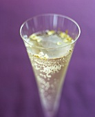 Champagne cocktail with gold leaf