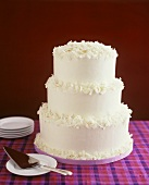 Three-tiered white coconut wedding cake