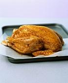 Raw marinated chicken on baking tray