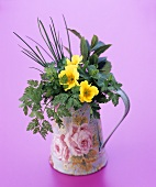 Herbs and primulas in a jug