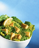 Romaine lettuce with croutons, Caesar salad style