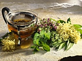Herbs and flowers for medicinal tea