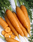 Carrots with tops on white background