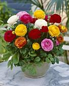 Mixed ranunculus in vase