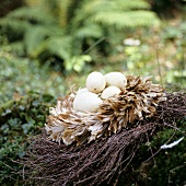 White squashes in nest of twigs and feathers
