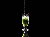 Liquorice and mint cocktail, garnished with liquorice root