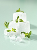 Cool and refreshing: peppermint leaves on ice cubes