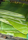 Banana leaves (popular in Asia for wrapping food)