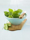 Fresh basil leaves in a small bowl, knife