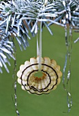 Aniseed ring hanging on a fir branch