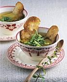 Provençal bread soup