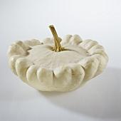 A white patty pan squash