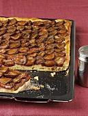 Zwetschgendatschi (plum cake) on baking tray