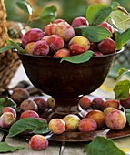 Plums with leaves in a large goblet