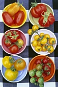 Six types of tomatoes in dishes on checked tablecloth