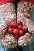 Früchte in den Händen liegend