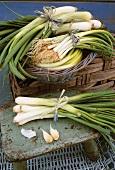 Leeks and spring onions in small basket and on a stool