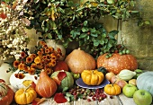 Autumn still life of flowers, pumpkins, squashes and apples