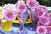 Pink gerberas in glasses out of doors