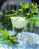 Vanilla cream with mint and lemon balm in a glass