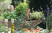 Bruschetta and a basket of herbs out of doors