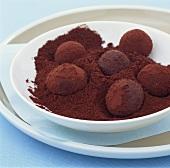 Spiced truffles in cocoa powder