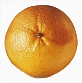Overhead view of a grapefruit