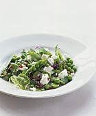 Pea salad with ricotta, red peppercorns and herbs