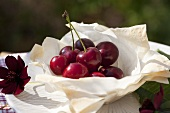 Cherries in a puff pastry dish