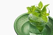Fresh mint in a tea glass