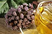 Common butterbur (petasites hybridus) and tea