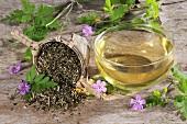 Herb robert (geranium robertianum) fresh, dried and as a tea