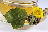 Coltsfoot tea