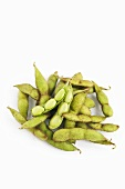 Soy beans in pods
