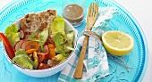 Mixed salad with a plain pork escalope