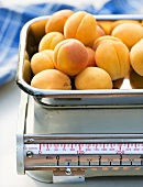 Apricots on a kitchen scale