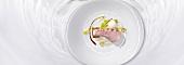 Cochon de lait with cucumber yogurt (molecular gastronomy)