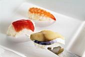 Three different nigiri sushi