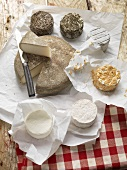 Various types of cheese from Normandy