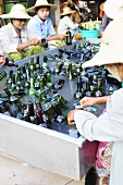 Wine bottles being washed (vineyard in Asia)