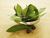 A bowl of bay leaves