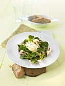 Lamb's lettuce with sliced mushrooms and cream cheese gnocci