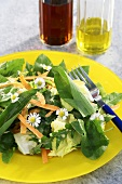 Spring salad with chives and daisies
