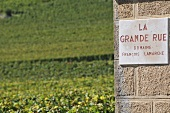 La Grande Rue (a vineyard)