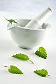 A mortar, pestle and peppermint leaves