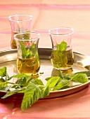 Oriental mint tea