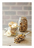 Apple and coconut granola and apple chips